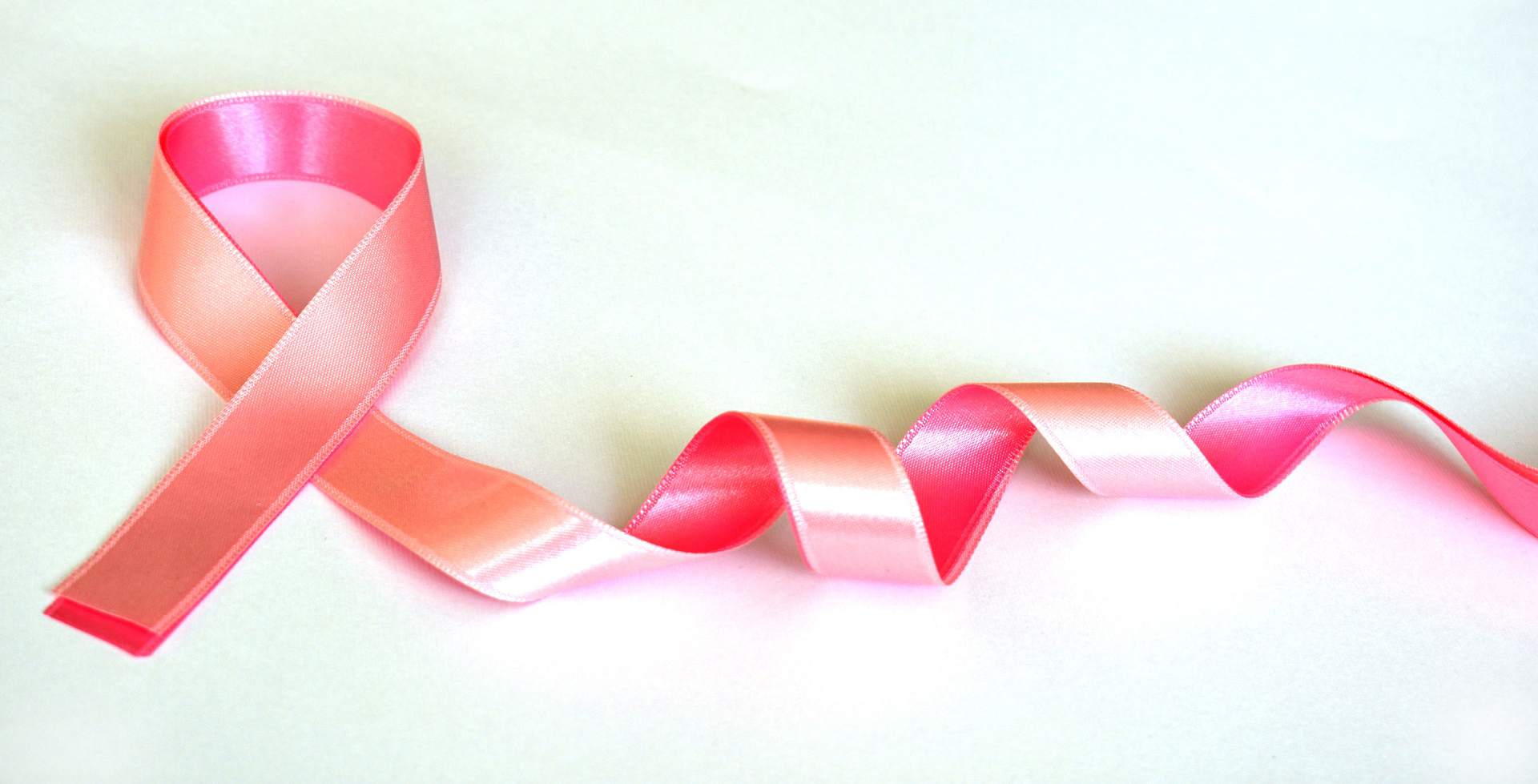 Honoring those we've lost to breast cancer and to breast cancer survivors!   #BreastCancerAwareness